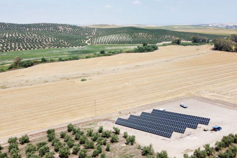 estructura hincada para instalacion fotovoltaica desarrollada por sunsupport